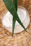 Crème d'aloès images libres de droits