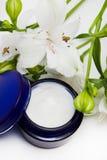 Crème d'hydratation de produit de beauté Photos libres de droits