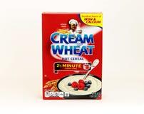 Crème de blé Images stock