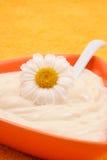 Crème de camomille Photo libre de droits