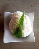 Crème de glace à la vanille avec la menthe image stock