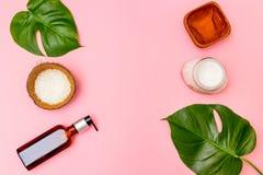 Crème de noix de coco, feuilles tropicales Soins de la peau organiques image libre de droits