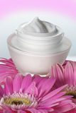 Crème de visage Photo stock
