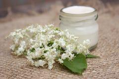 Crème de visage avec des fleurs de châtaigne Cosmétiques Photo libre de droits