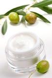 Crème de visage et brindille d'olive Image stock
