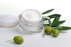 Crème de visage et brindille d'olive Image libre de droits