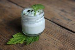 Crème de visage organique Photo stock