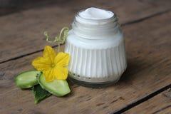 Crème de visage organique photographie stock libre de droits