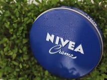 Crème et usines de Nivea images stock