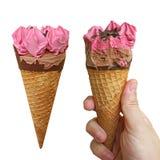 Crème glacée de baie avec la prise de main Images stock