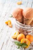 Crème glacée de fruit image stock