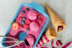 Crème glacée de fruit avec des baies et des cônes Image stock