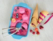 Crème glacée de fruit avec des baies et des cônes Photographie stock