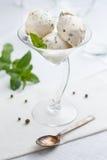 Crème glacée de menthe et de poivre images libres de droits