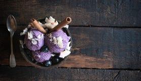 Crème glacée de myrtille Photo libre de droits