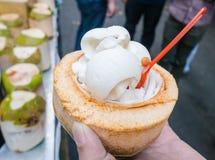 Crème glacée de noix de coco Images libres de droits