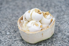 Crème glacée de noix de coco Image libre de droits