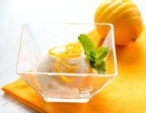 Crème glacée faite maison Photographie stock libre de droits