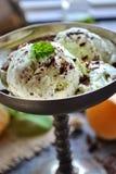 Crème glacée en bon état de puce de chocolat images libres de droits