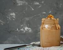 Crème glacée faite maison de banane de petit déjeuner Photographie stock libre de droits