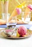 Crème glacée faite maison de prune Image libre de droits