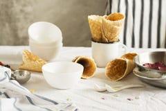 Crème glacée faite maison de sorbet Photos stock