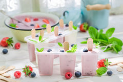 Crème glacée juteuse avec du lait et des fruits images libres de droits