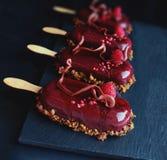 Crème glacée rouge foncé de gelato de baie avec des framboises sur le fond foncé photo libre de droits