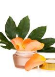 Crème hydratante de luxe de visage avec des roses images libres de droits