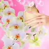 Crème naturelle de fleur Photographie stock libre de droits