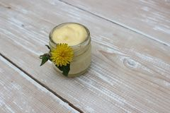Crème organique pour le visage images libres de droits