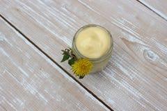 Crème organique pour le visage photographie stock libre de droits