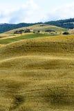 Crète Senesi (Toscane, Italie) Photo stock
