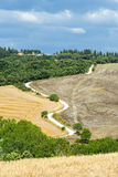Crète Senesi (Toscane, Italie) Images stock