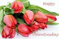 Créateur libre de Saint-Valentin de tir heureux de fleur photographie stock