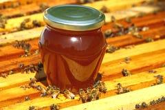 Création d'abeilles Photo libre de droits