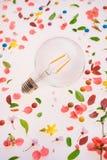 Créativité d'ampoule et nouveau concept d'idées images stock