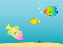 Créatures de mer Photos libres de droits
