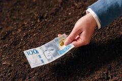 Crédito bancario en la moneda sueca para el inicio y el debel del negocio agrícola Imagenes de archivo
