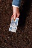 Crédito bancario en la moneda sueca para el inicio y el debel del negocio agrícola Foto de archivo libre de regalías