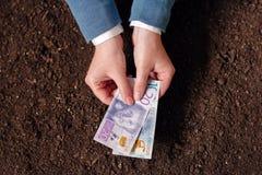 Crédito bancario en la moneda sueca para el inicio y el debel del negocio agrícola Imagen de archivo