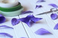 Créez les fleurs faites main Déroulement des opérations, outils et matériaux photos libres de droits