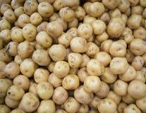 Créole de pomme de terre images libres de droits