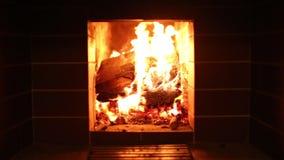 Crépitement de bois de chauffage dans la cheminée banque de vidéos