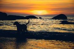 Crépuscule à la plage de Palolem, Goa Photos stock
