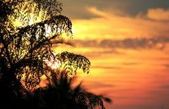 Crépuscule 39459574 Photographie stock