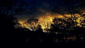 crépuscule Image stock