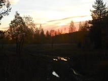 Crépuscule d'automne dans les forêts photo stock