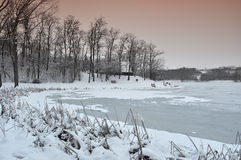 Crépuscule dans le bord de lac photo libre de droits