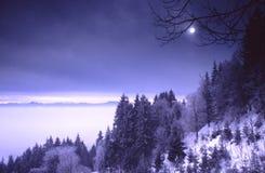 Crépuscule de l'hiver photo stock